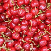 cherries-fruit-mature-eating-nature-fresh-cherry-ripe-fruit-the-background